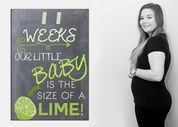 11 weeks bumpboard
