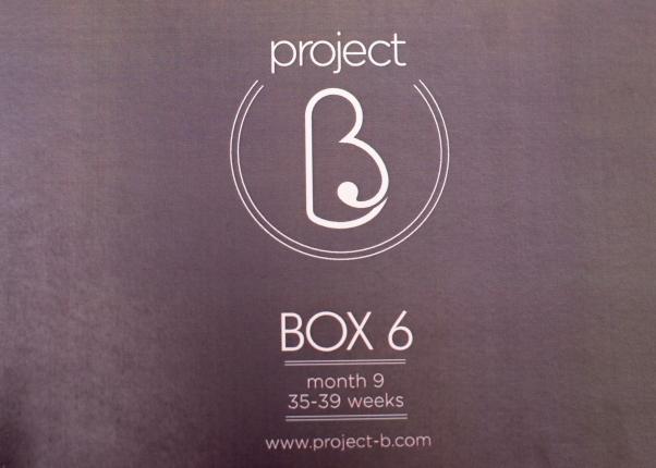 box 6.1.jpg