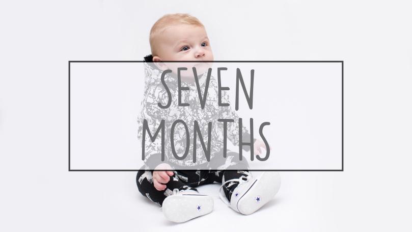 Seven Months.jpg